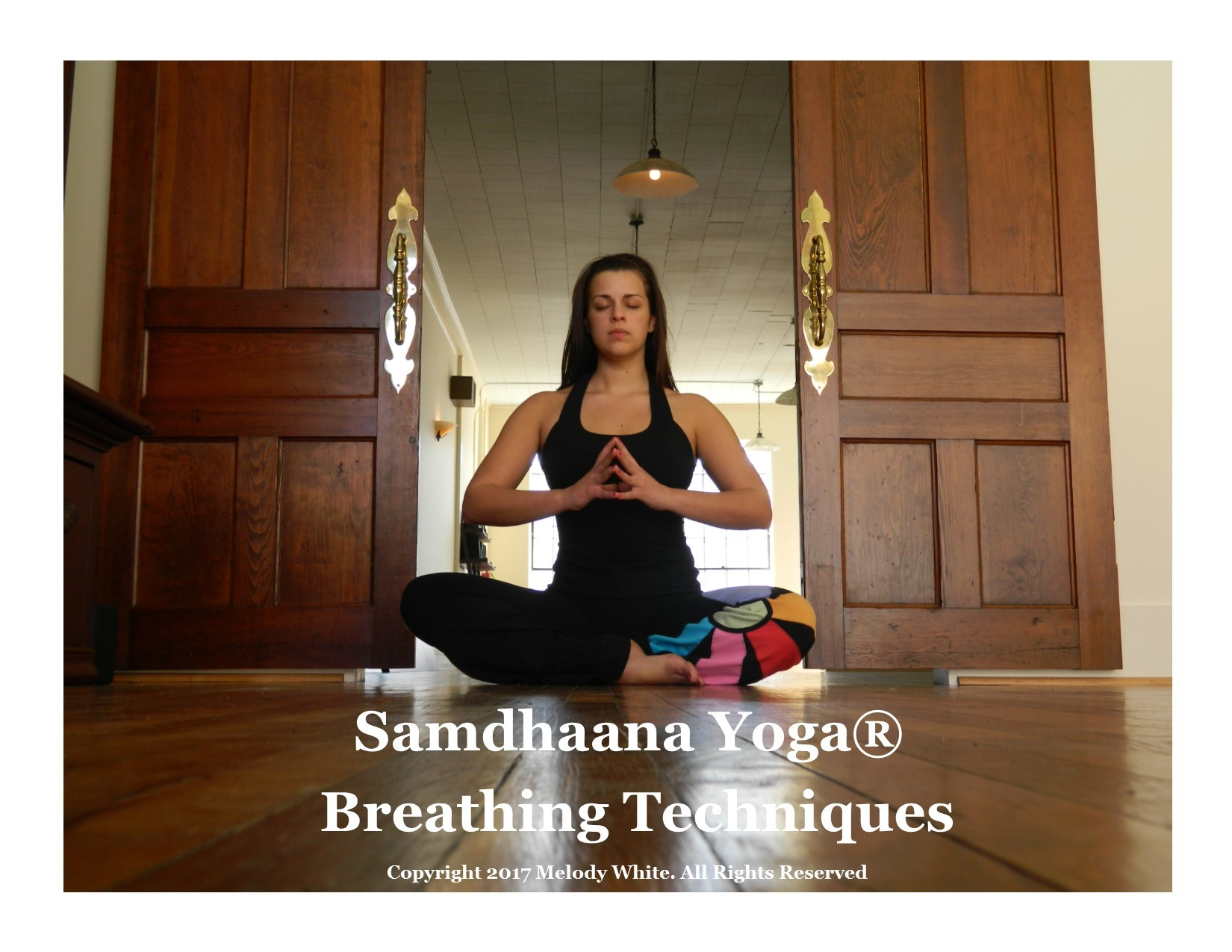 samdhaana yoga breathing techniques