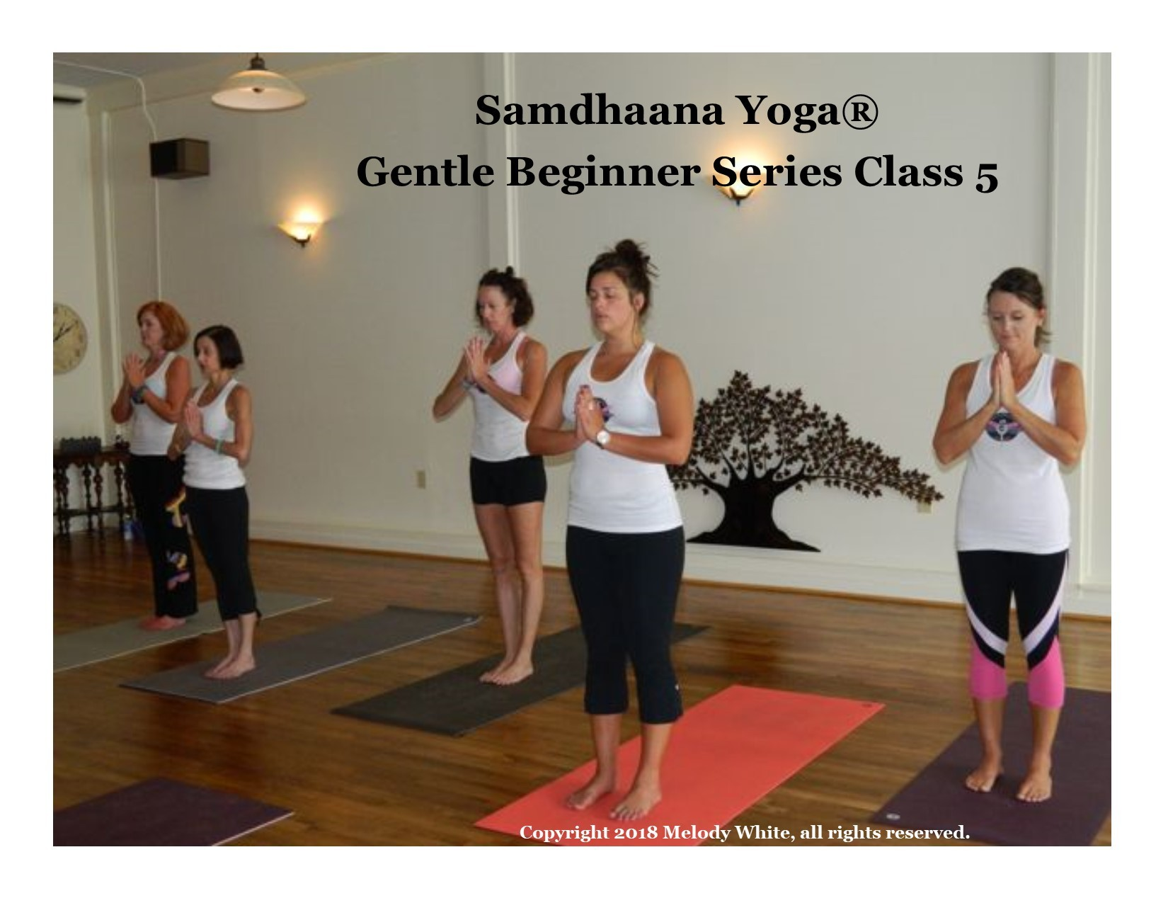 samdhaana_gentle_beginner_5