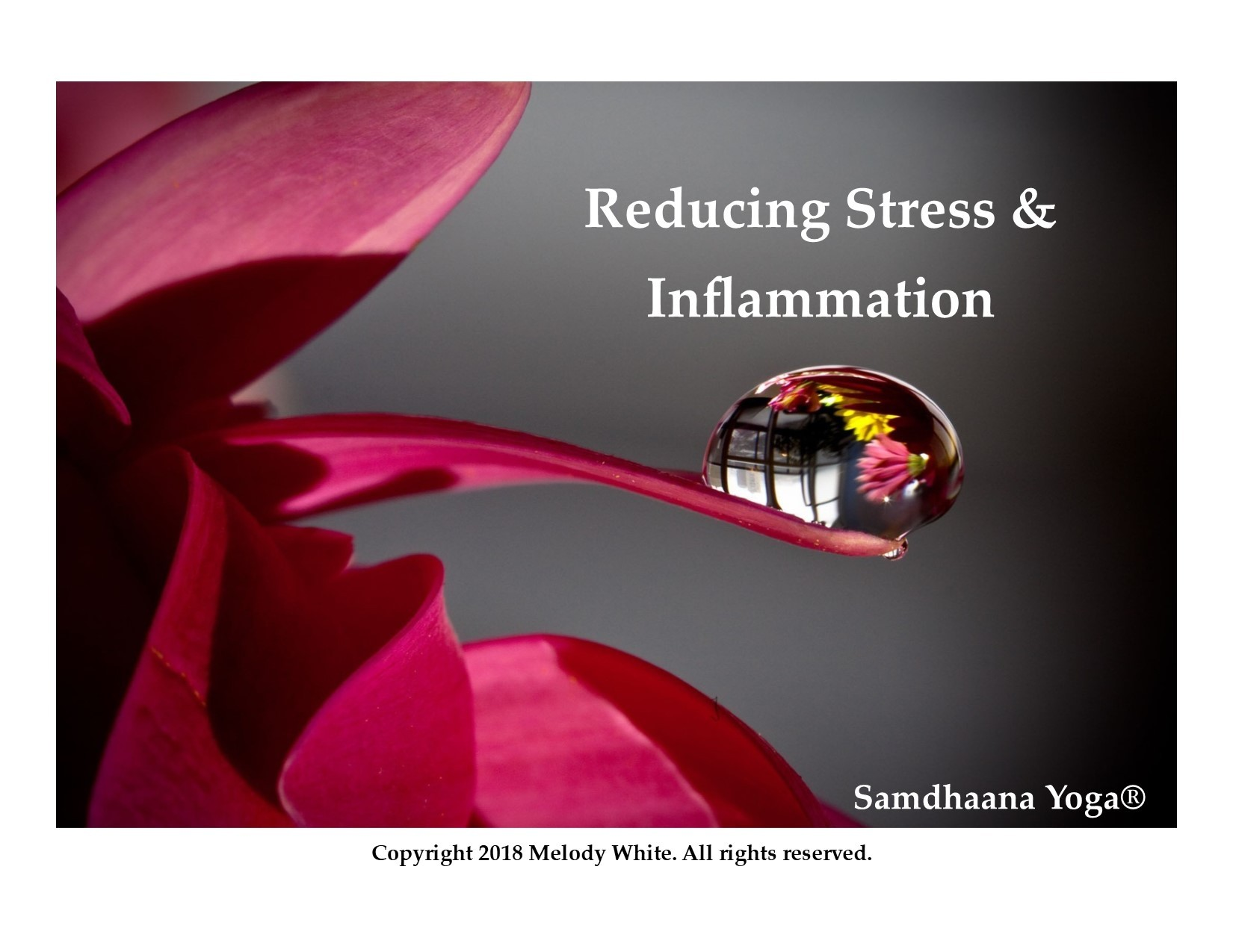 reduce_inflammation_vagus_nerve